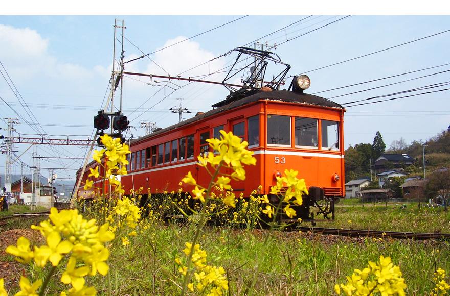 花嫁電車デハニ50形写真